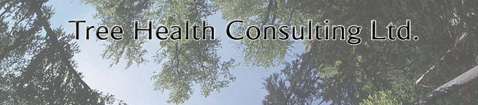 Tree Health Consulting Ltd